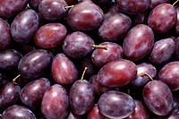 little purple plums as background