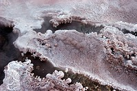 El Tatio geyser valley is located in Andes Mountains near Atacama Desert Northern Chile at 4200m altitude. El Tatio is the largest geyser field of sou...