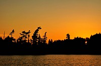 Sunset on a Remote Wilderness Lake with Silhouette of Pine Trees