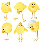 Set of chicks. Vector image