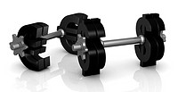 two dumbbells with the euro and dollar symbol instead of discs 3d render