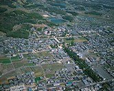 Horyu_ji area, aerial view