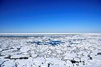 Drift ice, Shiretoko