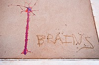 'Brains' and a streak of fake blood appear on wet concrete  Part of a Zombie Crawl in New York City