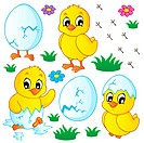 Cute chickens collection _ picture illustration.