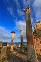 Morocco, Volubilis Archeological Site, Roman Ruins