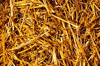 dry yellow straw which has remained after harvesti