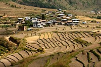 The village of Sopsokha inmidst terraced rice plots, Bhutan