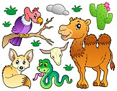 Desert animals collection 1 _ picture illustration.