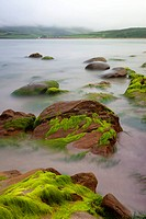 Big boulders at Irish coast covered with green seaweed long exposure makes seawater look like mystery fogg