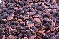 some raw cranberry beans ready to cook