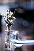 Flowers in glass bottle, on table at casual pavement cafe. Shallow depth of field.