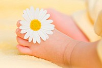 Lovely infant foot with little white daisy on it. The baby is three months old.
