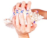 isolated body part shot of beautiful healthy young woman´s manicured hands with shell on white