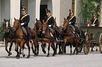 Militaria, Italy, 20th century. Voloire Artillery Regiment on horseback (Reggimento Artiglieria a Cavallo Voloire).