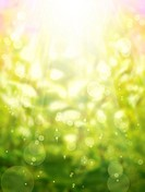 art abstract spring background with the sun
