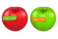 2 Apples With Labels, Isolated On White Background, Vector Illustration Gradient Mesh