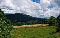Green mountain Bieszczady
