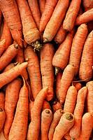 fresh natural carrots background closeup