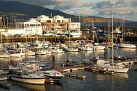 Marina in the city of Ponta Delgada  Sao Miguel island, Azores, Portugal