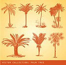 Set of vector isolated silhouettes of trees