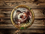 porthole with hippopotamus eye in water