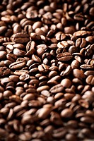 Close up of coffee beans, with shallow depth of field
