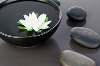 White flower floating in a black bowl surrounded by black pebbles