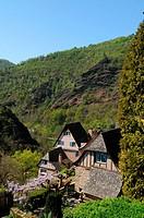 Conques, Aveyron, Midi-Pyrénées, France.