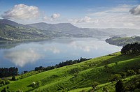 Otago Harbour, Otago Peninsula, Otago, South Island, New Zealand, Pacific