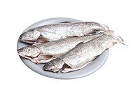 Three char fish (Salvelinus) on a grey plate