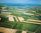 Germany, Lower Saxony, Aerial view of crops east of Hanover
