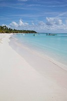 Saona Island, Dominican Republic, West Indies, Caribbean, Central America