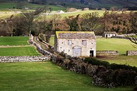 Field barn near Aysgarth, Yorkshire Dales, Yorkshire, England, United Kingdom, Europe