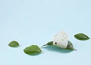Miniature house and leaves Ecology image