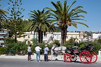 Greece, Ionian Islands, Zante, horse carriage in Solomos square                                                                                       ...