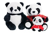 Family of Panda on White Background