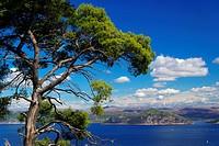Elaphitische Inseln 35