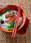 Popular Asian Cuisine _ Slices of Roasted Peking Duck with Rice Noodles Soup Bowl