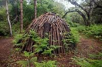 Pile of cut wood, Almonte, Huelva province, Andalusia, Spain