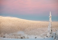 winter landscape, ski resort, Ruka, Finland