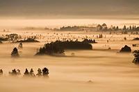 Sonnenaufgang im Murnauer Moos, Alpen, Kochelsee, Murnau, Bayerisches Voralpenland, Bayern, Deutschland, Europa, sunrise in Munauer Moos, Alps, pre_al...