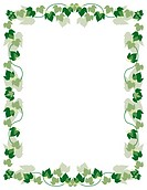 grapevine wreath frame background