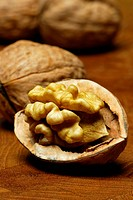 Opened Walnut / Juglans regia