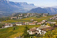 Vineyards, autum colours in Tramin, South Tyrol, Italy, Europe