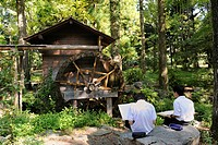 School children drawing plants and a rice mill all day at the Botanical Garden in Kyoto, East Asia, Asia