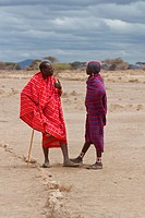 Two Masai men , older one leaning on traditional stick, standing talking in open plains, Amboseli, Kenya, East Africa