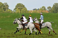 Polo players riding their horses, Reinhold Hofmann, left, and Patrick Maleitzke, center, of the Porsche Olympiapark team, followed by Cesar Ruiz_Guina...