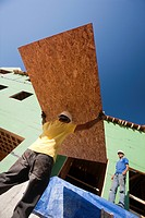 Hispanic carpenters carrying sheathing at a house under construction