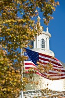 Tree and an American flag in front of a government building, Massachusetts State House, Boston, Massachusetts, USA